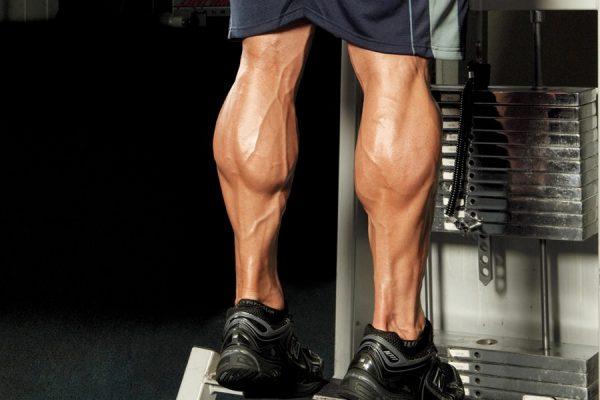 Tập bắp chân